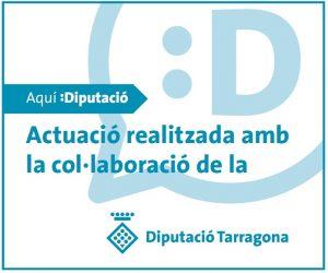 logo-dipu-subvencions